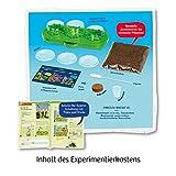 KOSMOS 632137 Fleischfressende Pflanzen, Insektenfresser selbst anpflanzen, Komplett-Set Anzucht-Station, Samen, Erde, Pipette, Experimentierkasten für Kinder ab 8 Jahren zu Garten, Biologie, Natur - 2