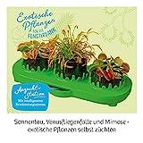 KOSMOS 632137 Fleischfressende Pflanzen, Insektenfresser selbst anpflanzen, Komplett-Set Anzucht-Station, Samen, Erde, Pipette, Experimentierkasten für Kinder ab 8 Jahren zu Garten, Biologie, Natur - 9