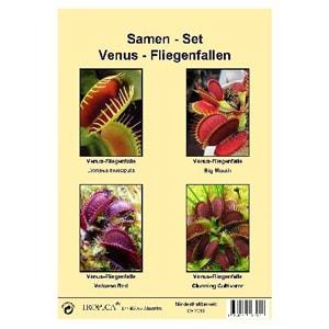 Fleischfressende Pflanzen Samen Set